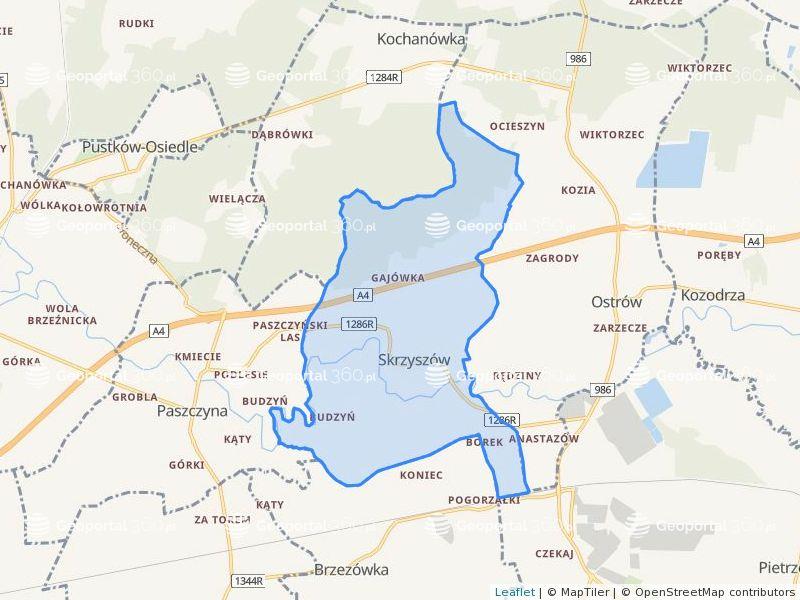 Dzialki Dla Obrebu 0007 Skrzyszow Gm Ostrow Geoportal360 Pl