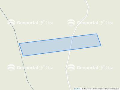 Geodezja Lublin 9st Buchenholz Holzpfl/öcke 120cm auf Tomaten B/äumen und Pflanzen f/ür Garten Holz pfosten